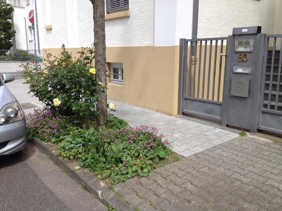Hier haben Anwohner den Bürgersteig bepflanzt