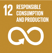 SDGs-Goal 12 responsible consumption production