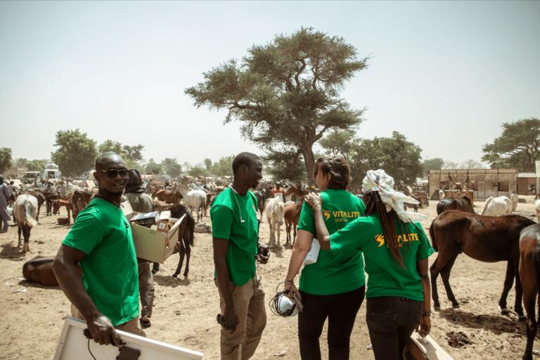 Erfolgskonzept VITALITE Senegal