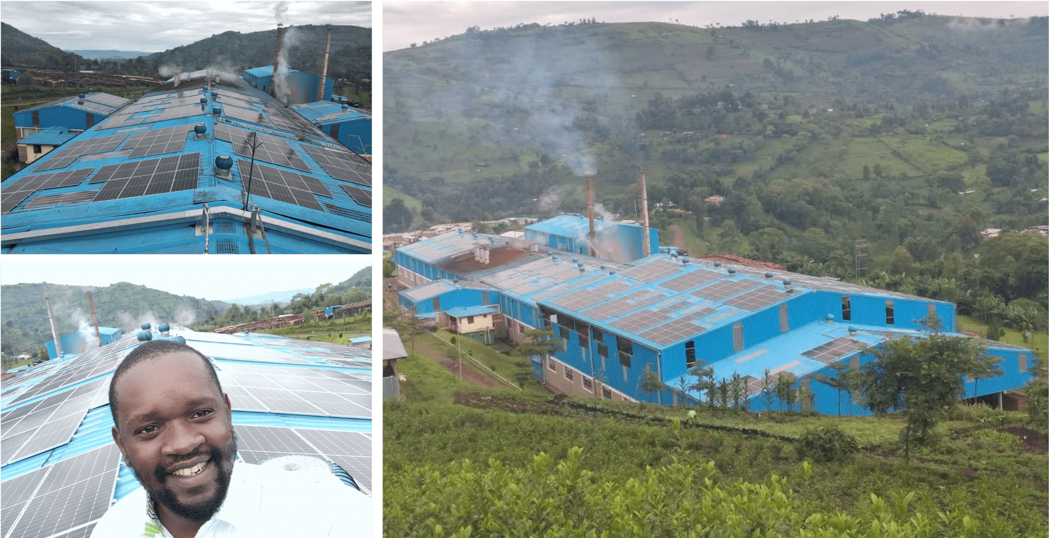 Mbogo Valley Tea